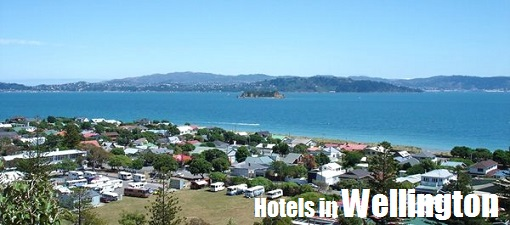Picture of Wellington